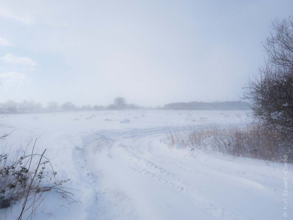 """The Beast from the East"" blowing snow across an arable field, creating a misty haze"