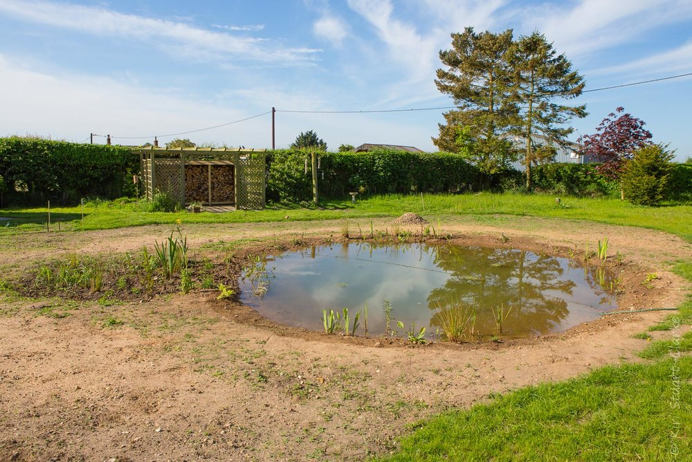 Nar Cottage Pond and bog garden as it was in May 2014, newly planted with lots of bare earth