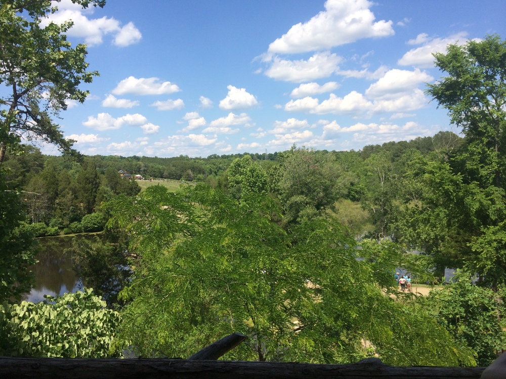 View from the treetops…so beautiful!!!