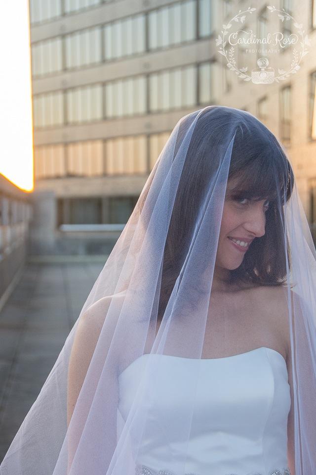 ahh! The light! The veil!!