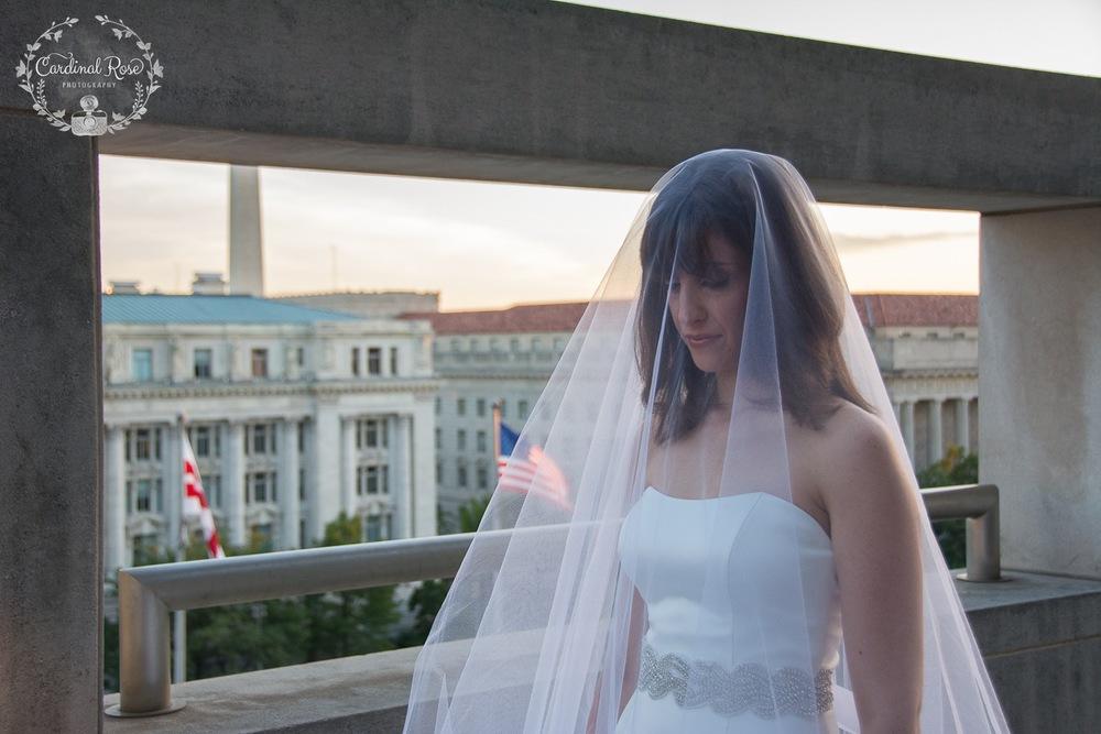 DC wedding, DC wedding photographer, VA wedding photographer, National Press Club wedding