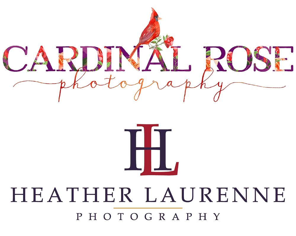 wedding-photographer-houston-texas-brand-offbeat-upscale-richmond-virginia-red-purple-photo.jpeg