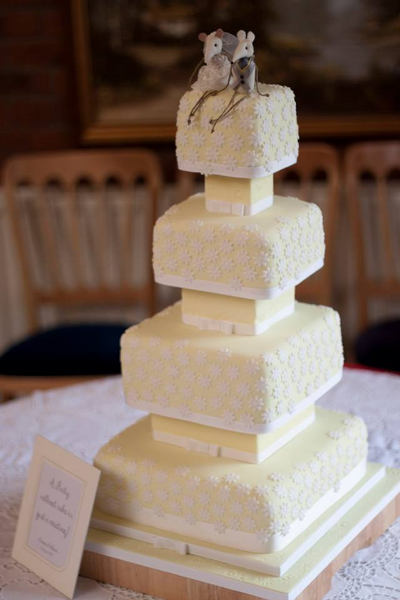 Beautiful cake designed and made by Fiona Williamson.  www.caketopcreations.net