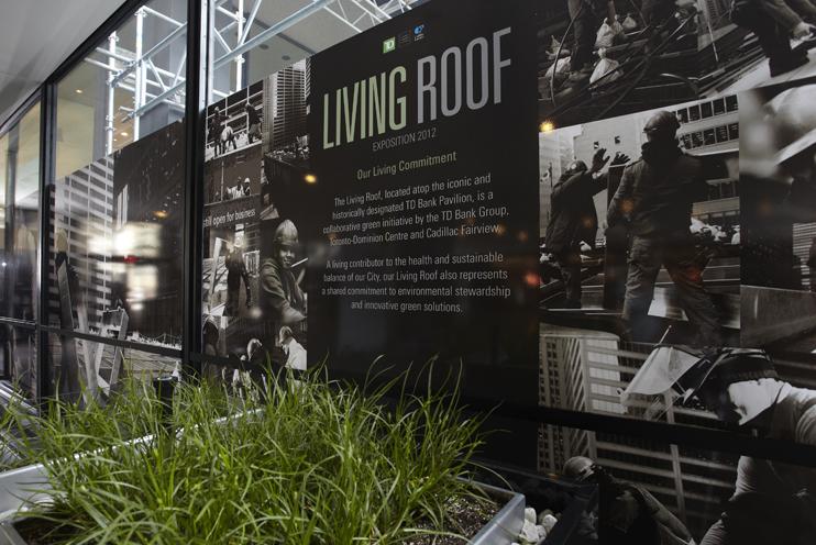 livingRoof01_742.png