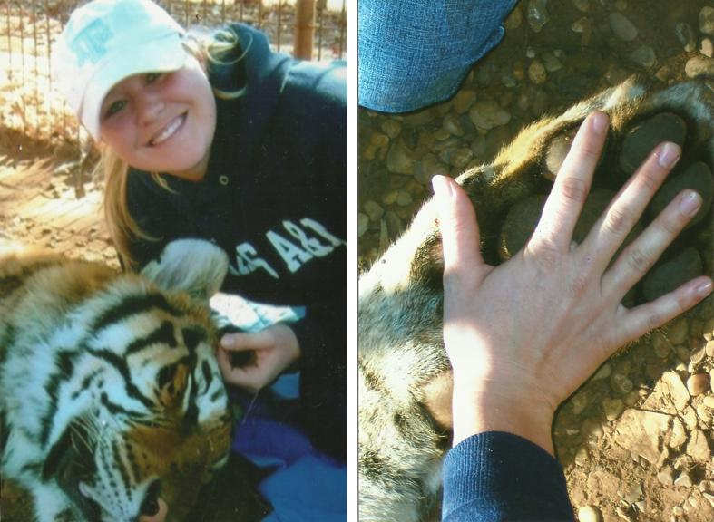 Mrs. Davis used to work with tigers. Photo from personal collection