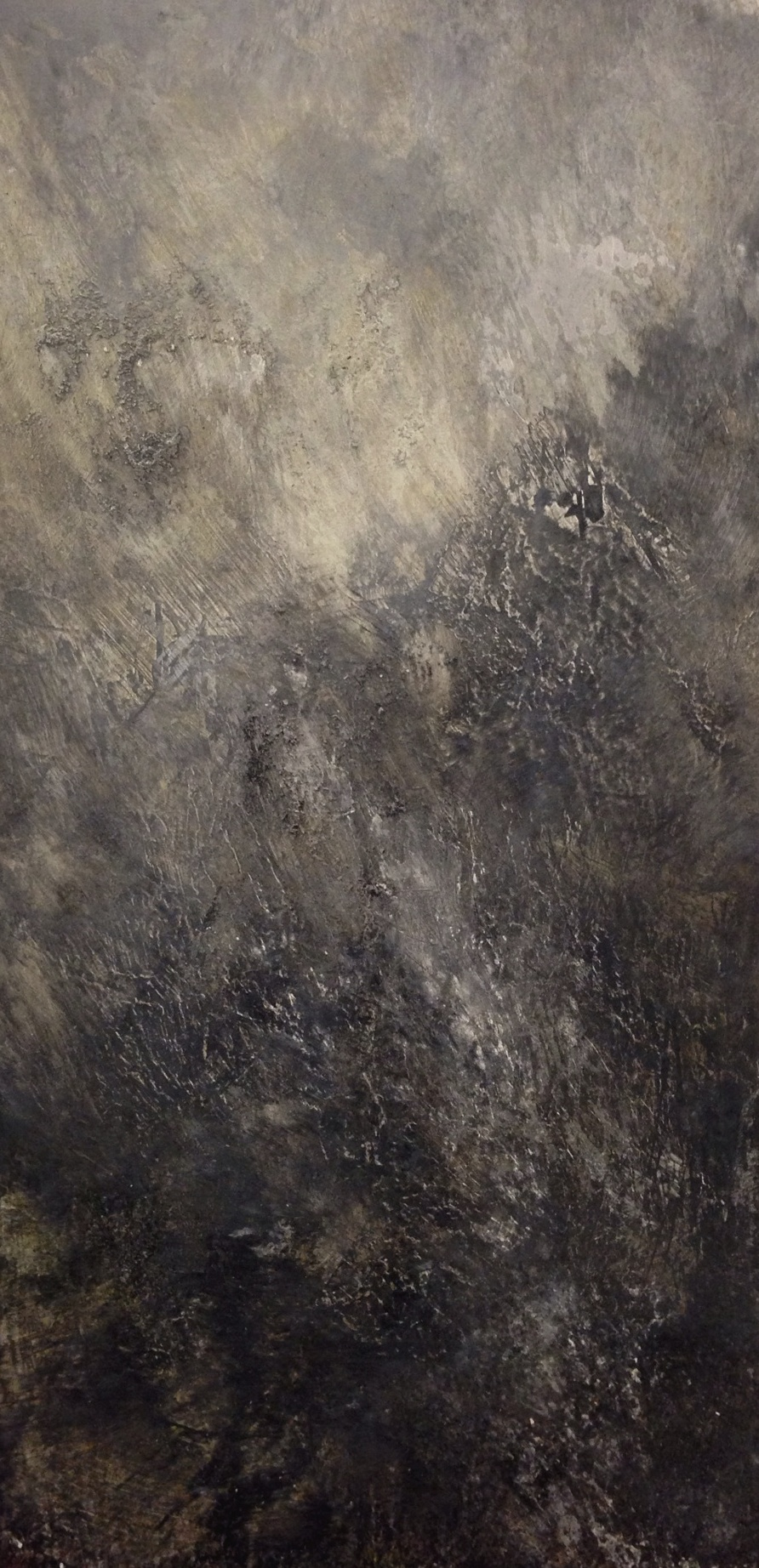 Terre, 2014      Oil and mixed media on aluminum // 24 x 48 inches