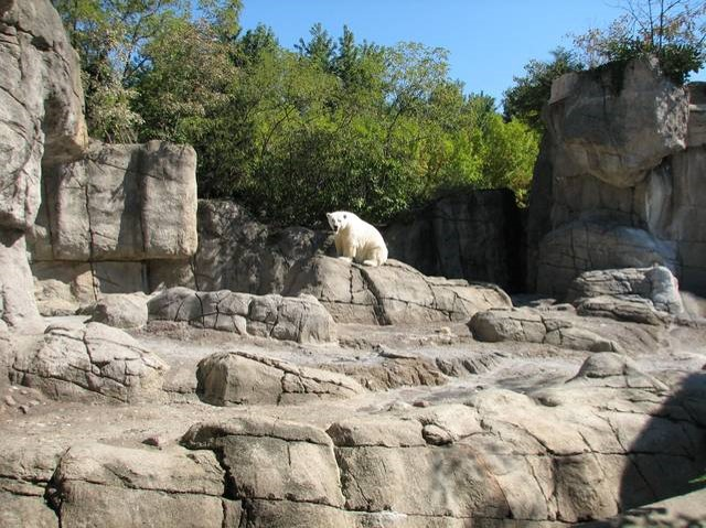 ZOOLOGICAL ROCKSCAPES    As a 30+ years AZA member and industry leader, we are able to meet unique challenges common in customized, on-of-a-kind projects. Manwarren Habitats works diligently to create aesthetically pleasing, cost-effective, durable, long-lasting and animal safe exhibits.