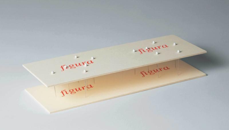 Copy of  Figura Figura   2012   tinta tipográfica e alfinetes sobre cartão   5 x 18 x 12 cm