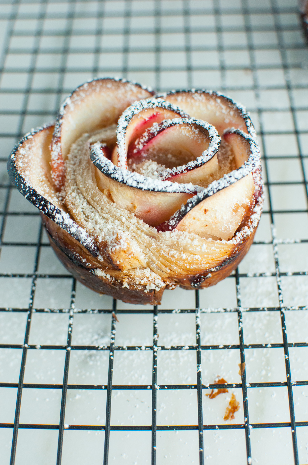 Apple Rosettes