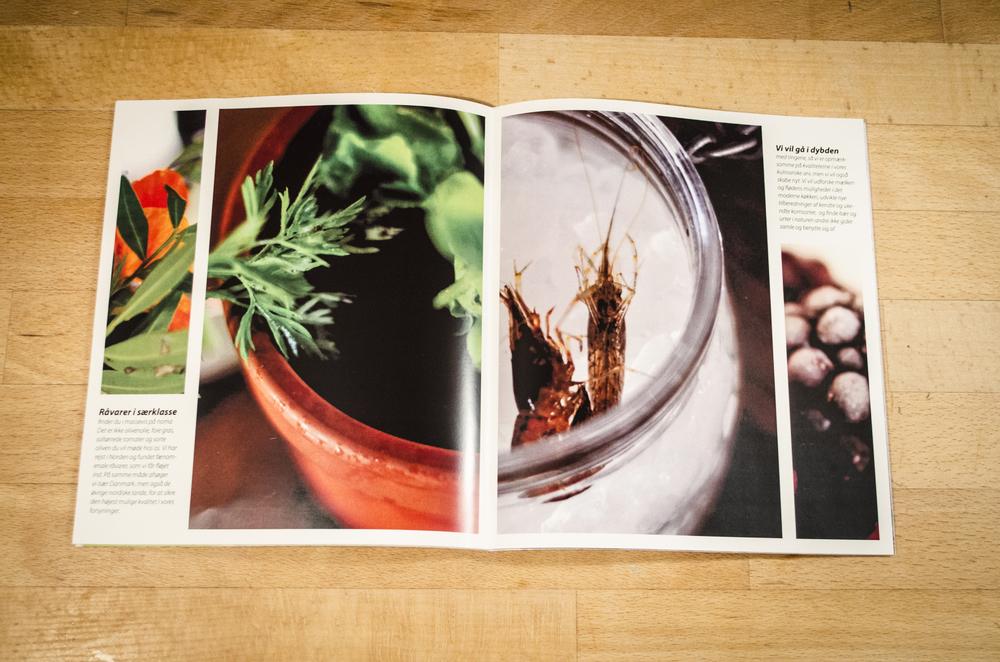 noma brochure 016.jpg