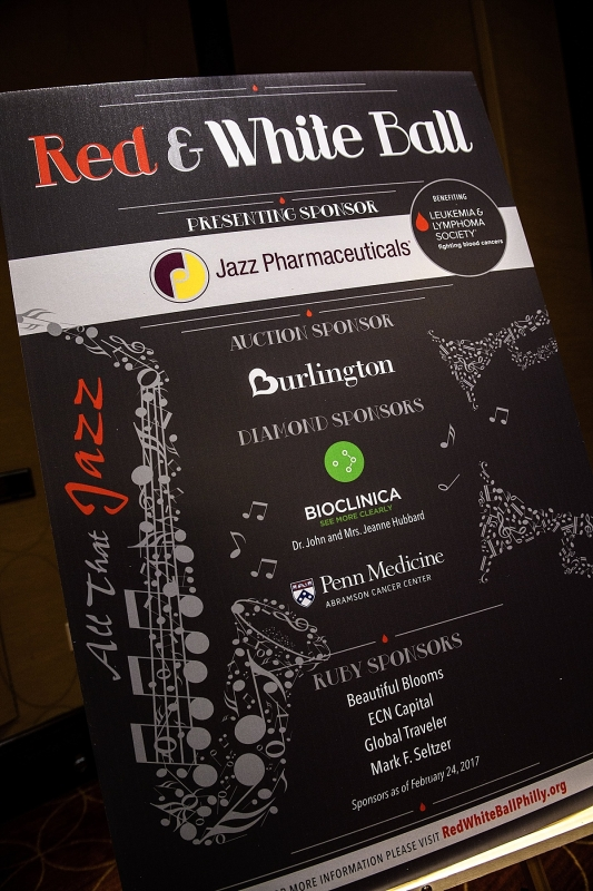 leukemia-lymphoma-society-red-white-ball-2017_1239.jpg