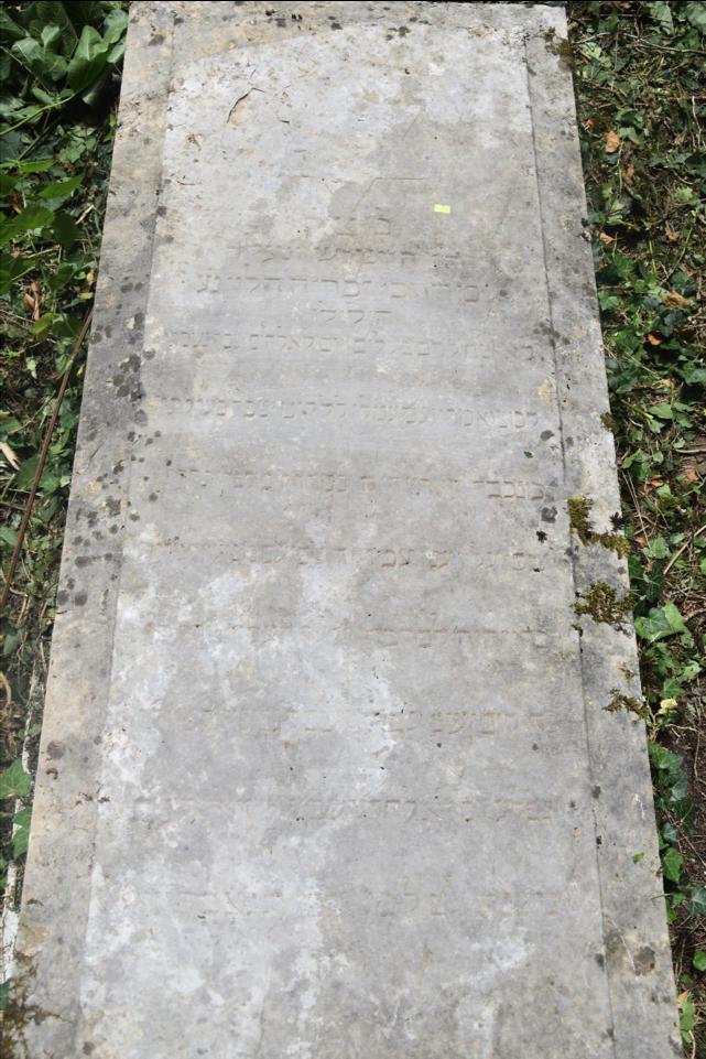 Quad A 365, row C, column 34