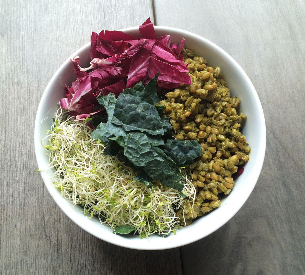 """""""Greened Grains"""" in a rice bowl—freekeh cooked in a sorrel/ramp broth"""