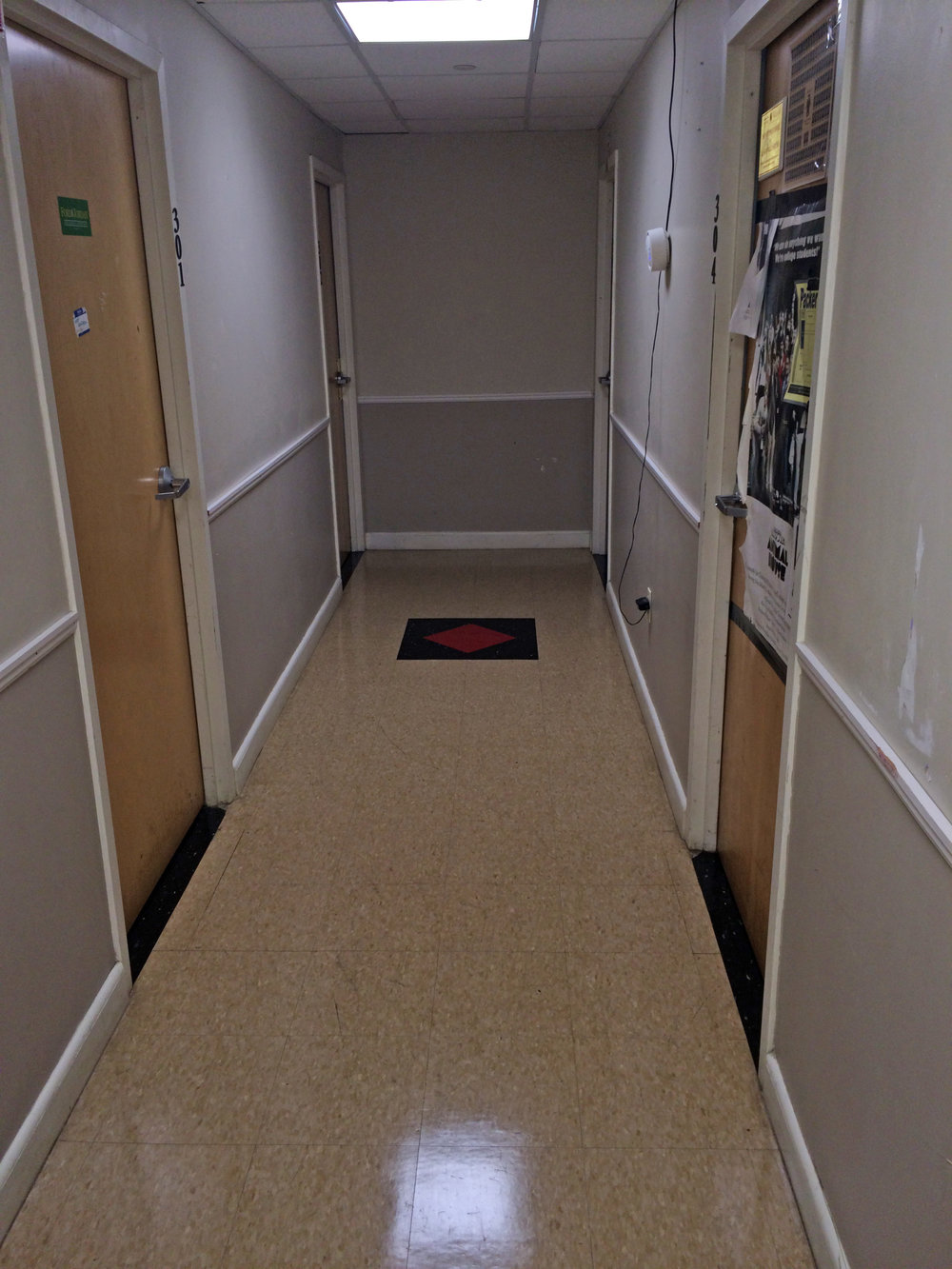 A commercial cleaner was hired to do a total cleaning of the house - 3rd Floor Hallway