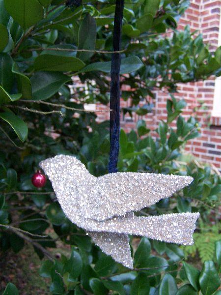 Glitter Bird.jpg