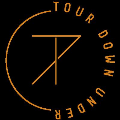 tdu logo