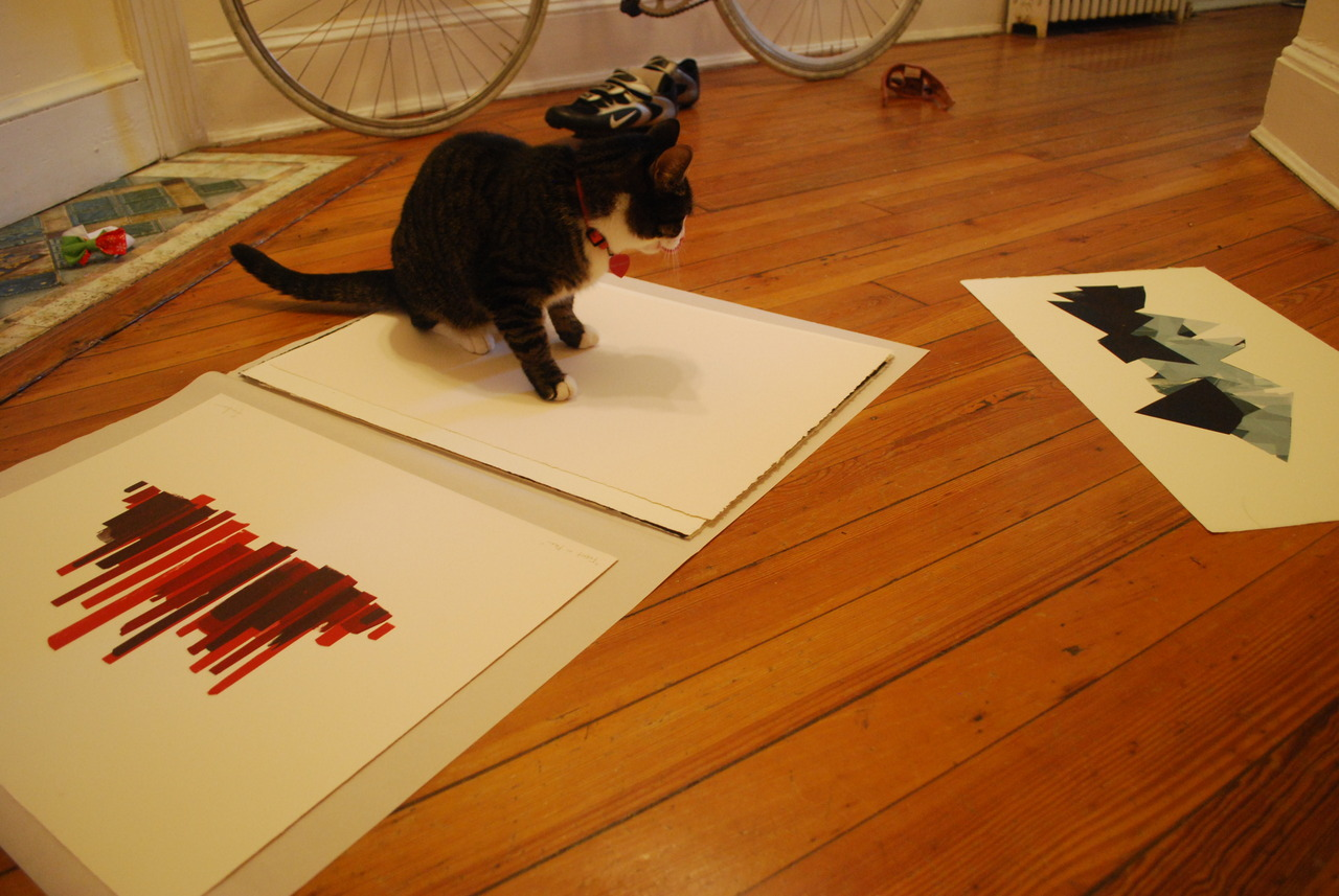 Trying to photograph some new prints while a cat is around… is impossible.