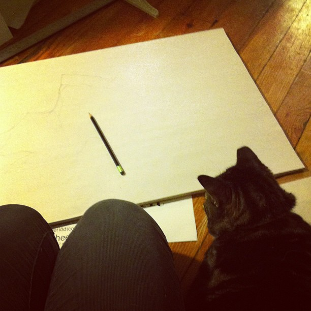 Drawing on the floor with the cat— getting ready for my second solo show in June!