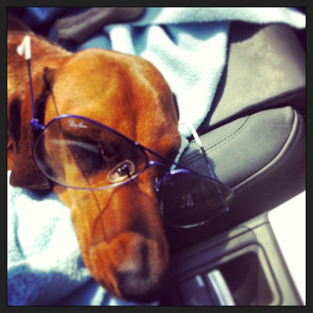 shades car.JPG