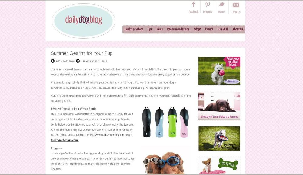 Daily Dog Blog: Logo and Blog Layout
