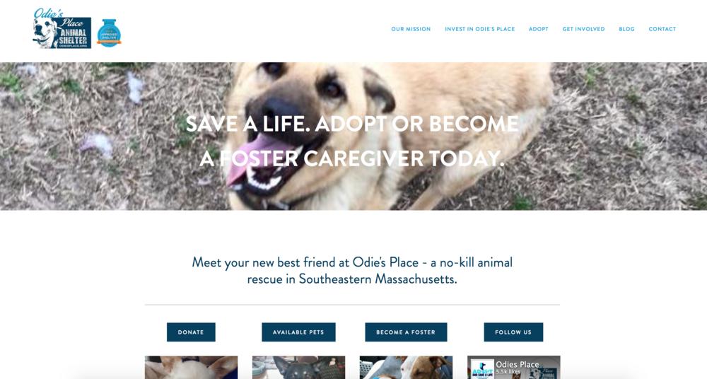 Odie's Place: Web Design