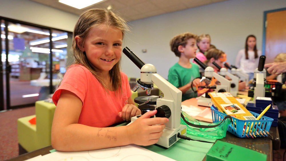 In bioscience, kids checked out cells using microscopes. Photo credit: Darryl Moran Photography