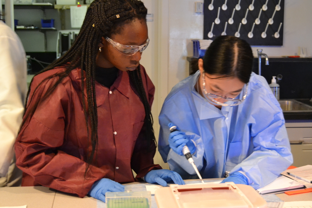 Students at our Upper Merion R&D facility receive hands-on experience to understand what it's like to work in a Biology lab.