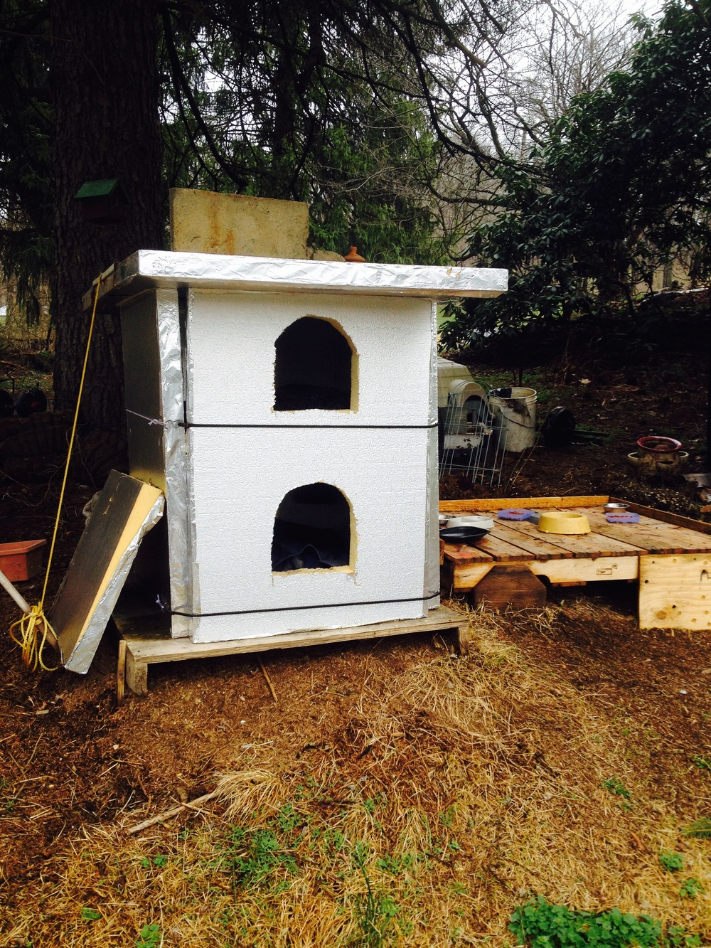 GaryPic-Cat_House1.jpg