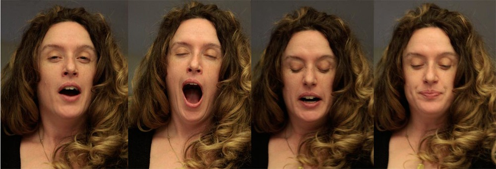 'Anatomy of a yawn' from the series 'Still in Motion' 2013