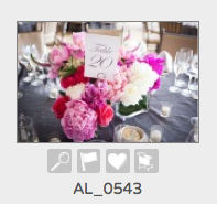 Use the heart icon to add images to Favorites. File names are below the images in this mode. Use this number when referencing images to me.