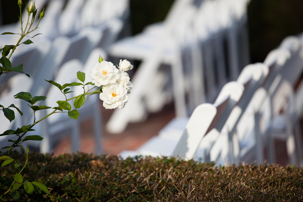CITY_PARK_NEW_ORLEANS_WEDDING_27.jpg