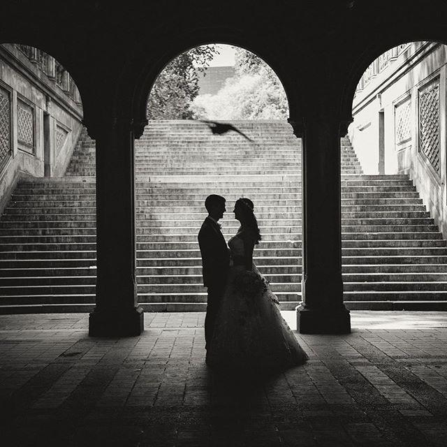 You gotta get there early for this! Back in Central Park tomorrow for another elopement! . . . #weddingblog #centralparkwedding #bethesdaterrace #weddingblogger #loveauthentic #junebugweddings #weddingphotos #nycelopement #weddingmoments #bridebook #vscowedding #huffpostweddings #newyorkweddingphotographer #nycweddings #theknot #radlovestories #elopement #photobugcommunity @wedphotoinspiration @greenweddingshoes