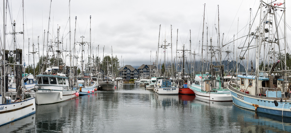 The busy working docks at Ucluelet