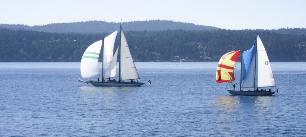 Of the hundreds of sailboats we see every year, these two actually were using their sails