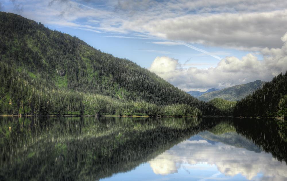 Beartrap Bay mirror smooth