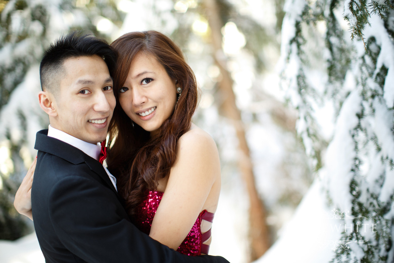 grouse_mountain_engagement004.jpg