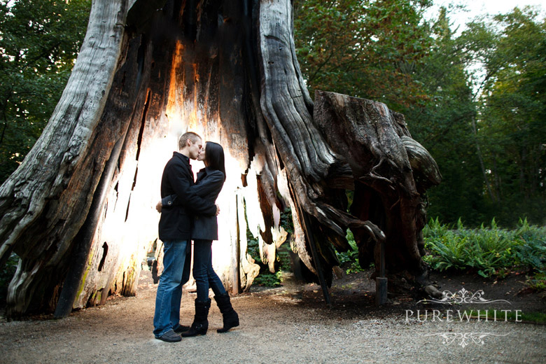 vancouver_stanley_park_engagement016.jpg