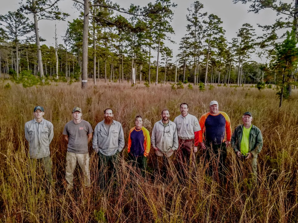 December 2017: Mark Bailey of Conservation Southeast (left above, right below) and Eric Spadgenske of USFWS (3rd from right) with the crew of U.S. Forest Service biologists who installed 48 artificial cavities to maintain nesting and roosting habitat for the red-cockaded woodpecker at Sehoy and Enon plantations in Bullock County, AL.  We had USFS folks from four Ranger DIstricts. From 2007 to 2017 this RCW population expanded from 4 to 32 groups, fledging over 50 young in 2017.