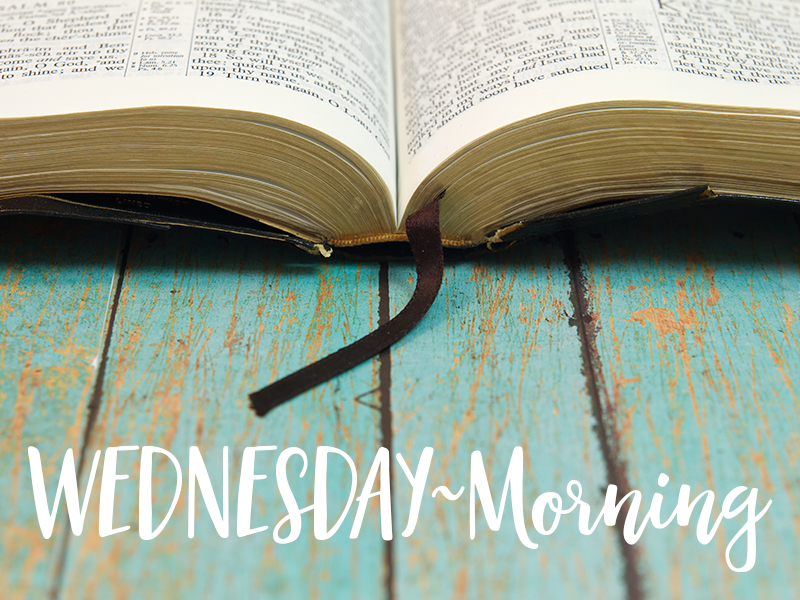 Wednesday~Morning -