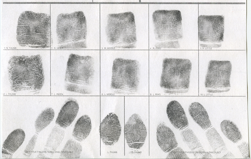 Jessamyn Lovell, Fingerprints (2011)