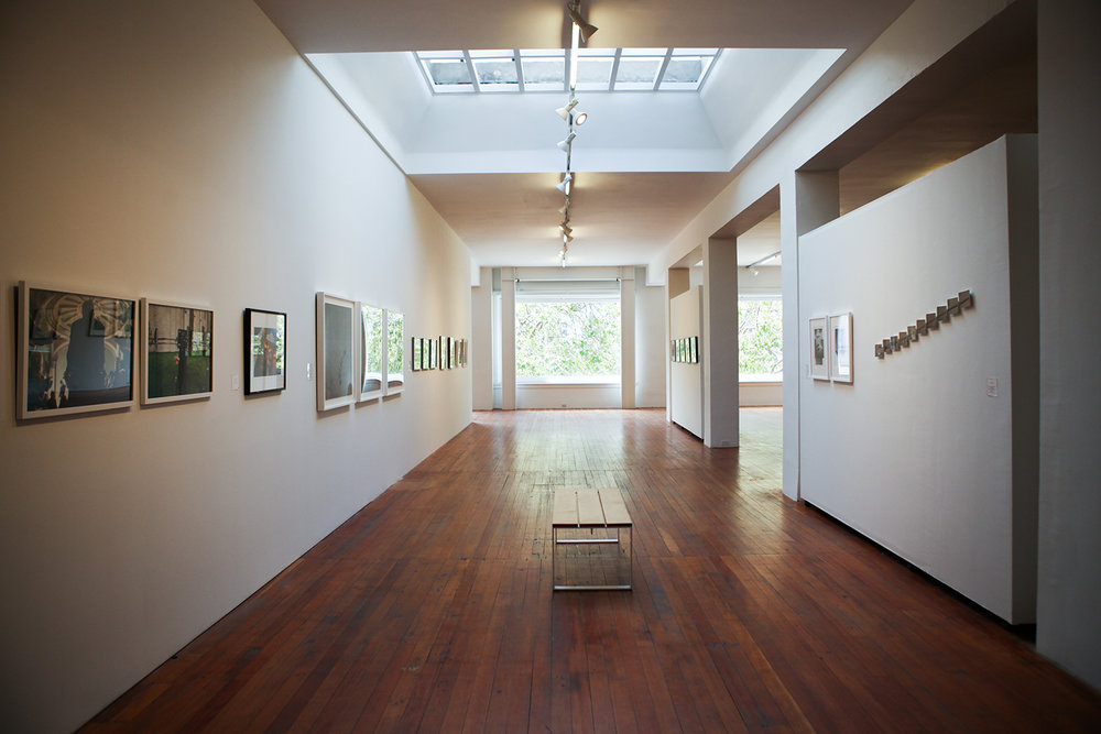 Installation view of the exhibition.
