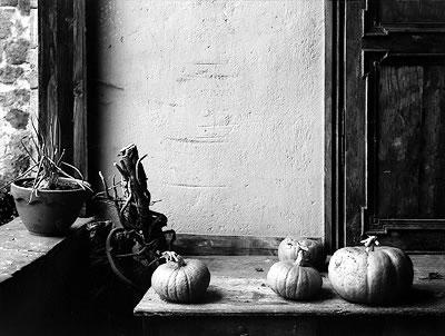 Mark Citret,  Pumpkins, House in Forez, France , from the SFC Fine Print Program