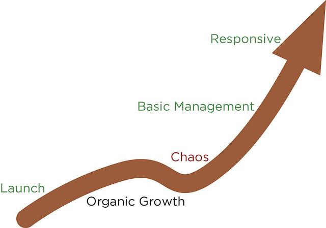 Welchman's digital governance maturity model.