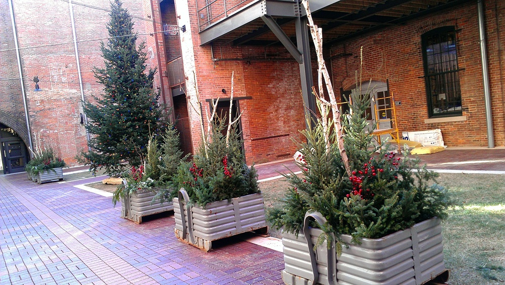 Ok, this isn't a cooler, but the holiday greenery in our courtyard is beautiful and we wanted to share!