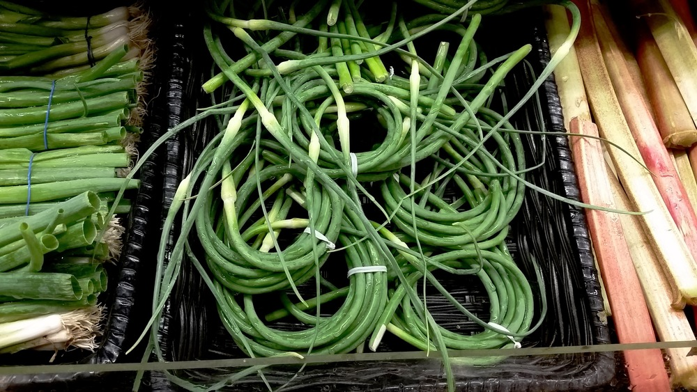 Garlic Scapes from Adam's Garlic