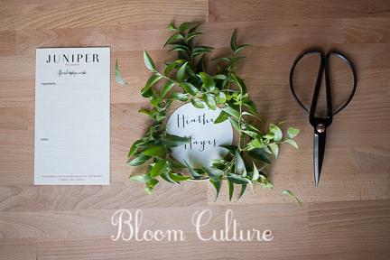 bloom_culture_001.jpg