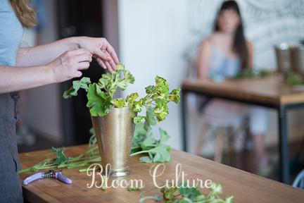 bloom_culture_030.jpg