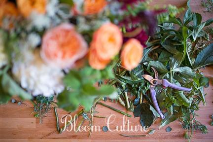 bloom_culture_046.jpg