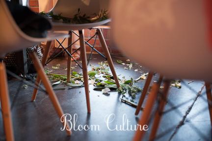bloom_culture_081.jpg