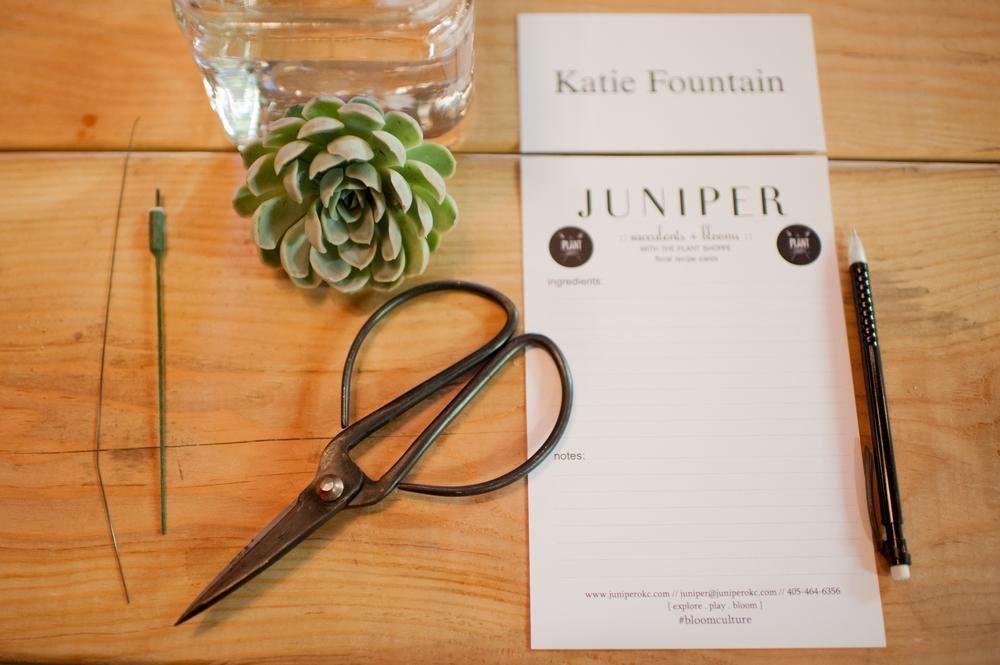 Juniper-Design0006.jpg